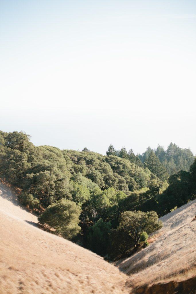 San Francisco - Megan Welker Photography 022