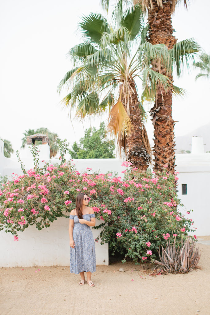 korakia-palm-springs-megan-welker-photography-for-bravwel034